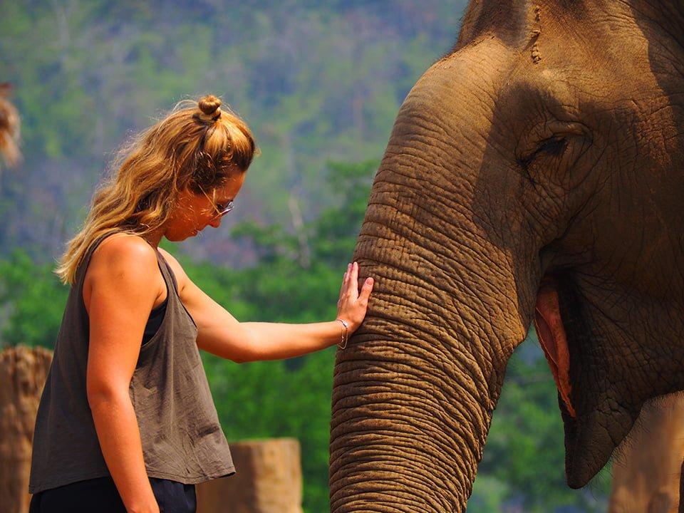 Gdzie w Tajlandii spotkać szczęśliwe słonie