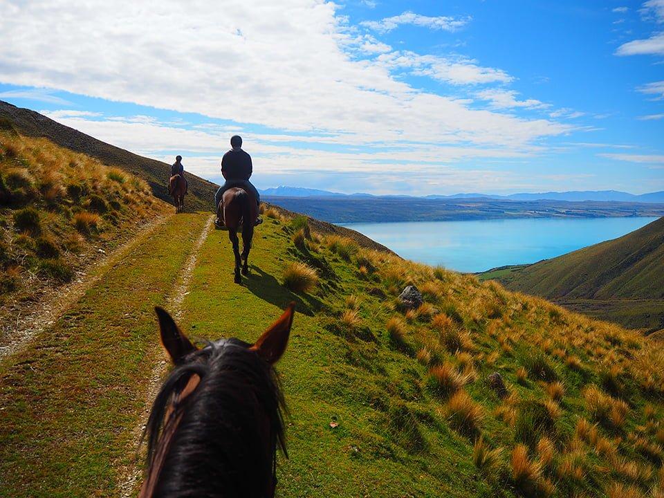 Jazda konna w Nowej Zelandii