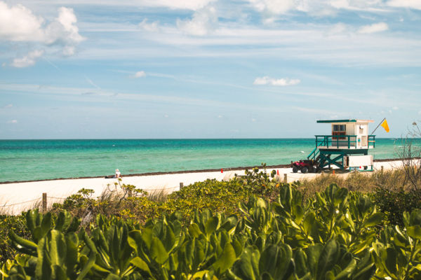 Florida Travel Guide and the best things to do