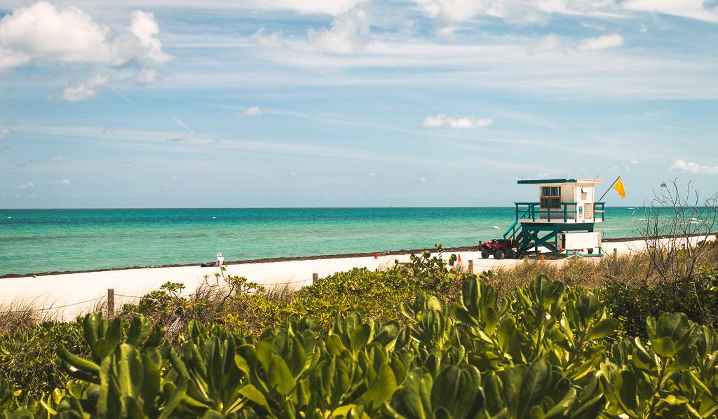 Floryda - jak zorganizować wyjazd na własną rękę? - praktyczny przewodnik